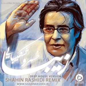Khosro-Shakibaei-Ziba-Shahin-Rashidi-Remix