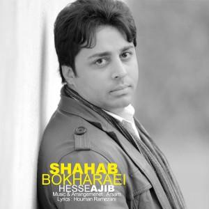 Shahab-Bokharaei-Hesse-Ajib-pxm9zvgb56