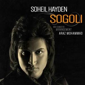 Soheil-Hayden-Sogoli