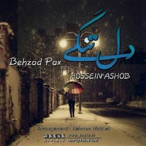 Behzad-pax1413b8c0f8aa