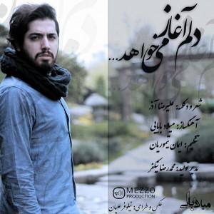 Milad-Babaei-Delam-Aghaz-Mikhahad-4628b5e6b06d21bc12a4c4fa2647880b