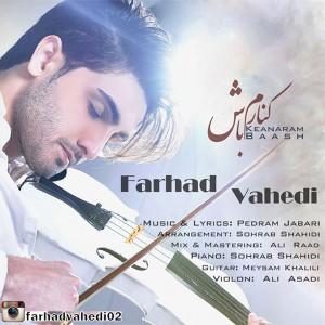 Farhad Vahedi - Kenaram Baash.mp3