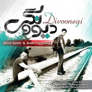 Mehdi Salehi & Arash Tahmasebi - Divoonegi.mp3