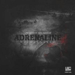 دانلود آلبوم جدید Various Artists به نام آدرنالین