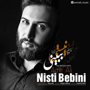 145572633876103178amir-ali-nisti-bebini