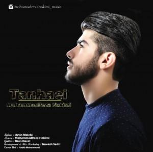 دانلود آهنگ جدید محمدرضا حکیمی به نام تنهایی