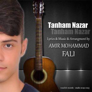 دانلود آهنگ جدید امیرمحمد فالی به نام تنهام نذار