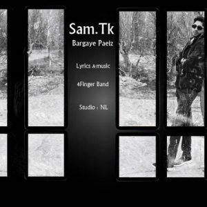 دانلود آهنگ جدید سام تی کی به نام برگ های پاییز