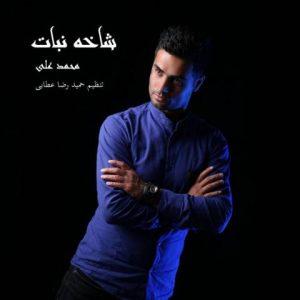دانلود آهنگ جدید محمد علی به نام شاخه نبات