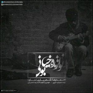 دانلود آهنگ نوازنده خیابونی از احمد سلو با لینک مستقیم