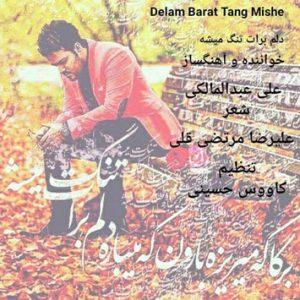 دانلود آهنگ جدید علی عبدالمالکی به نام دلم برات تنگ میشه
