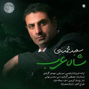 دانلود آهنگ شاه عرب از سعید محمدنبی با لینک مستقیم