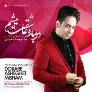 دانلود آهنگ دوباره عاشقت میشم از میثم جمشیدپور