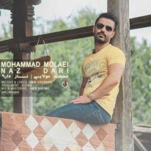 دانلود آهنگ جدید محمد مولایی به نام ناز داری