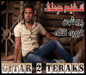 Saeid_Momeni_Gitar