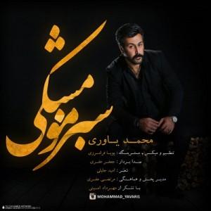 محمد یاوری به نام سبز مو مشکی