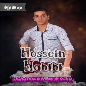 حسین حبیبی به نام تنهایی