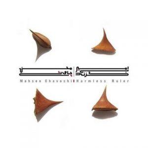دانلود آهنگ جدید محسن چاوشی به نام دل من
