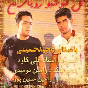 دانلود آهنگ مازندرانی مجید حسینی به نام گل خوش بو لیلای من